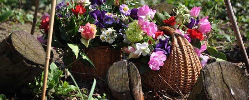 Begeleiding bij regelen begrafenis