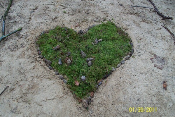 Ecologisch Verantwoorde uitvaart